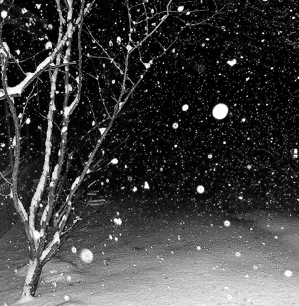 systematicwonder_wordless_snowing